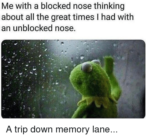 Me With a Blocked Nose Thinking About All the Great Times I