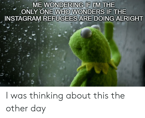 Instagram, Dank Memes, and Only One: ME WONDERING IF IM THE  ONLY ONE WHO WONDERS IF THE  INSTAGRAM REFUGEES ARE DOING ALRIGHT I was thinking about this the other day