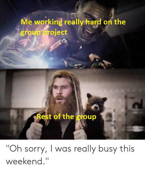 """Reddit, Sorry, and Working: Me working really hard on the  group project  Rest of the group """"Oh sorry, I was really busy this weekend."""""""
