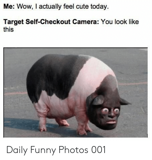 Cute, Funny, and Target: Me: Wow, I actually feel cute today  Target Self-Checkout Camera: You look like  this Daily Funny Photos 001