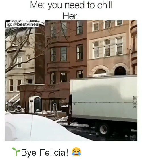 Bye Felicia, Chill, and Memes: Me: you need to chill  Her:  ig: a bestvines ⠀ 🌱Bye Felicia! 😂