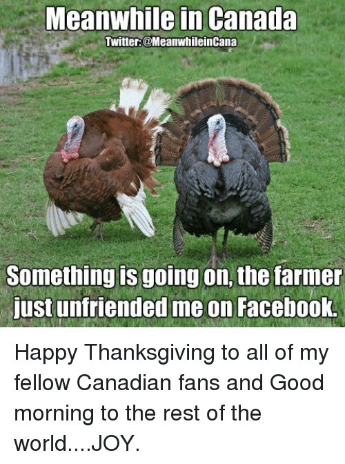meanwhile in canada twitter meanwhileincana something is going on the farmer 4525568 ✅ 25 best memes about terrible memes terrible memes,Memes De Thanksgiving