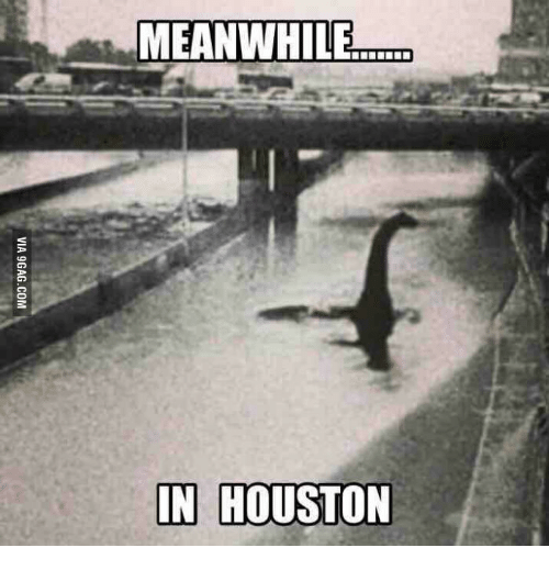 Image result for meanwhile in houston flood meme