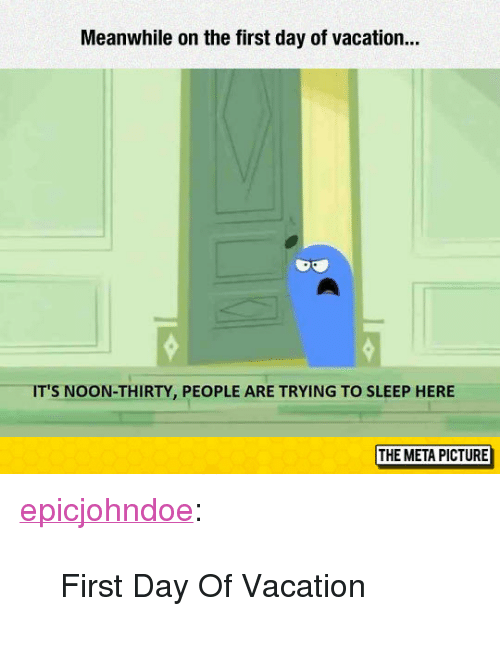 """Tumblr, Blog, and Vacation: Meanwhile on the first day of vacation...  IT'S NOON-THIRTY, PEOPLE ARE TRYING TO SLEEP HERE  THE META PICTURE <p><a href=""""https://epicjohndoe.tumblr.com/post/172805213324/first-day-of-vacation"""" class=""""tumblr_blog"""">epicjohndoe</a>:</p>  <blockquote><p>First Day Of Vacation</p></blockquote>"""