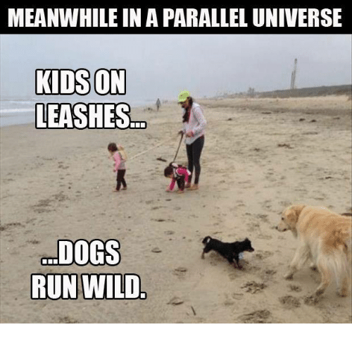 Dank, Run, and Kids: MEANWHILEINAPARALLEL UNIVERSE  KIDS ON  LEASHES 7  DOGS  RUN WILD.