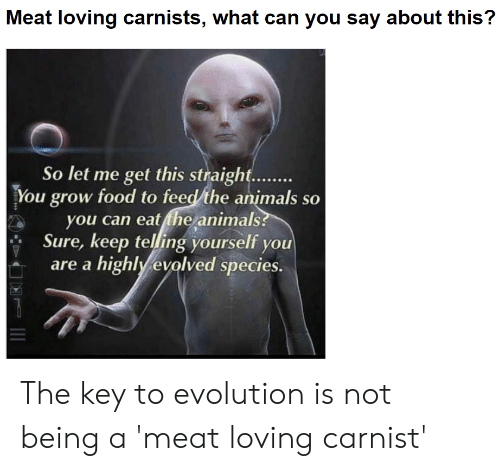 Animals, Food, and Evolution: Meat loving carnists, what can you say about this?  So let me get this straight  You grow food to feed/the animals so  you can eat the animals  Sure, keep telling yourself you  are a highly evolved species. The key to evolution is not being a 'meat loving carnist'