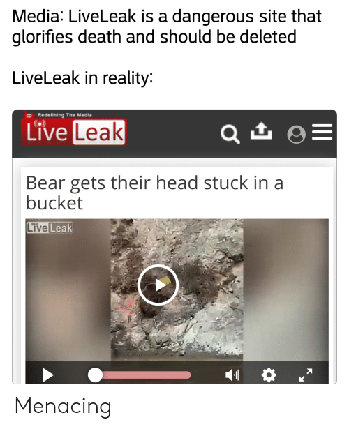 Media LiveLeak Is a Dangerous Site That Glorifies Death and Should