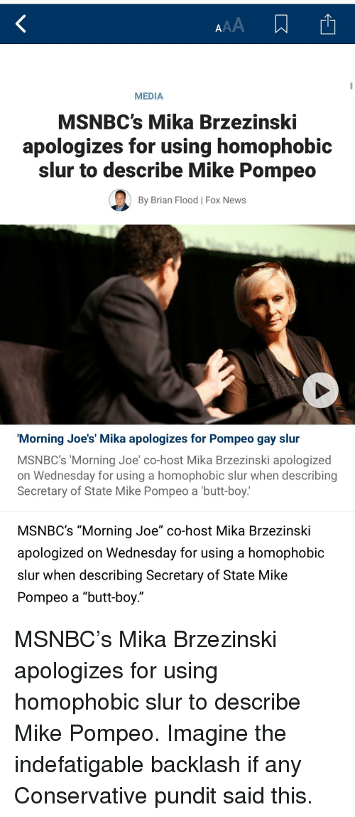 """Butt, News, and Fox News: MEDIA  MSNBC's Mika Brzezinski  apologizes for using homophobic  slur to describe Mike Pompeo  By Brian Flood 