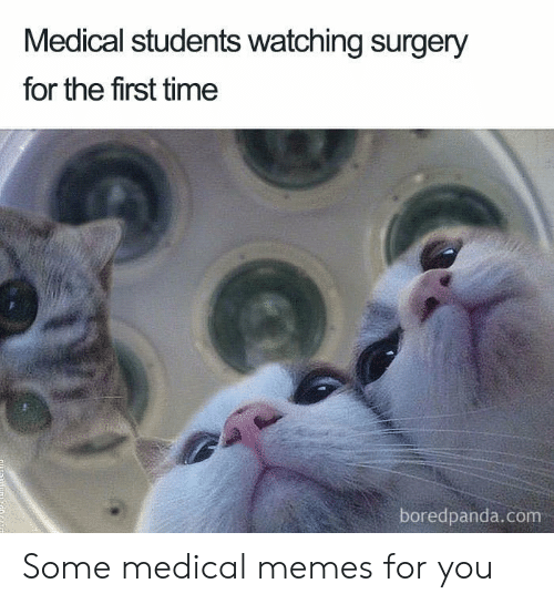 Memes, Time, and Com: Medical students watching surgery  for the first time  boredpanda.com Some medical memes for you