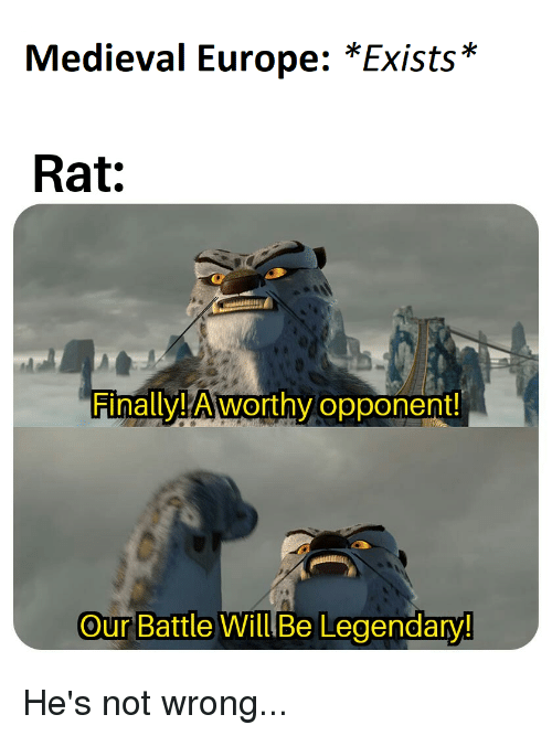 Medieval Europe Exists Rat Finallya Worthy Opponent Our Battle