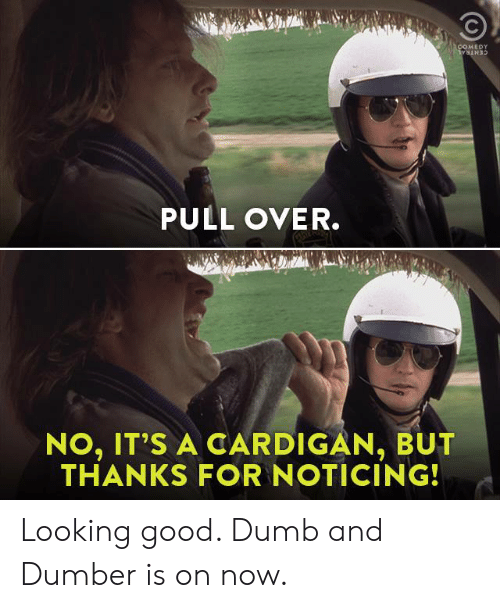 Dank, Dumb, and Good: MEDY  PULL OVER.  NO, IT'S A CARDIGAN, BUT  THANKS FOR NOTICING! Looking good. Dumb and Dumber is on now.