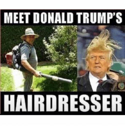 meet donald trumps hairdresser 1832309 meet donald trump's hairdresser donald trump meme on me me