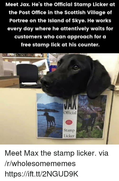 Post Office, Free, and Office: Meet Jax. He's the Official Stamp Licker at  the Post Office in the Scottish Village of  Portree on the Island of Skye. He works  every day where he attentively waits for  customers who can approach for oa  free stamp lick at his counter.  Official  Stamp  Licker Meet Max the stamp licker. via /r/wholesomememes https://ift.tt/2NGUD9K