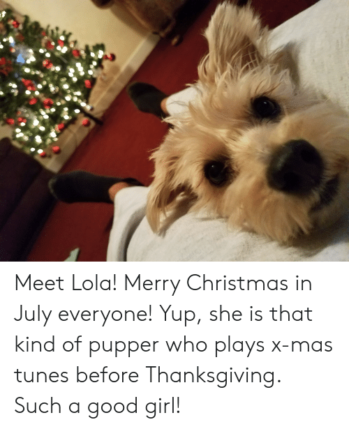 Merry Christmas In July Meme.Meet Lola Merry Christmas In July Everyone Yup She Is That