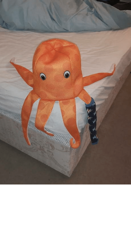 Lost, Paul, and Odd: Meet Paul the Lost Socktopus. He wears odd socks while I find the matching pair.