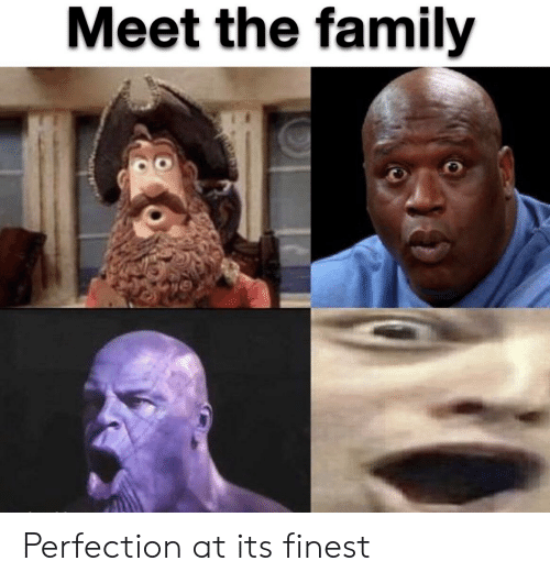Family, Reddit, and Perfection: Meet the family Perfection at its finest