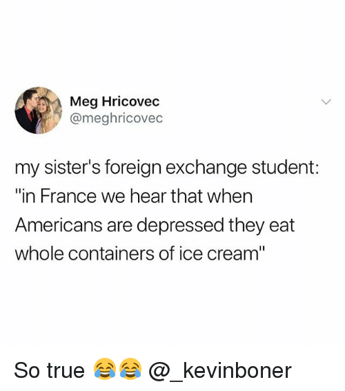 "Funny, Meme, and True: Meg Hricovec  @meghricovec  my sister's foreign exchange student:  ""in France we hear that when  Americans are depressed they eat  whole containers of ice cream"" So true 😂😂 @_kevinboner"