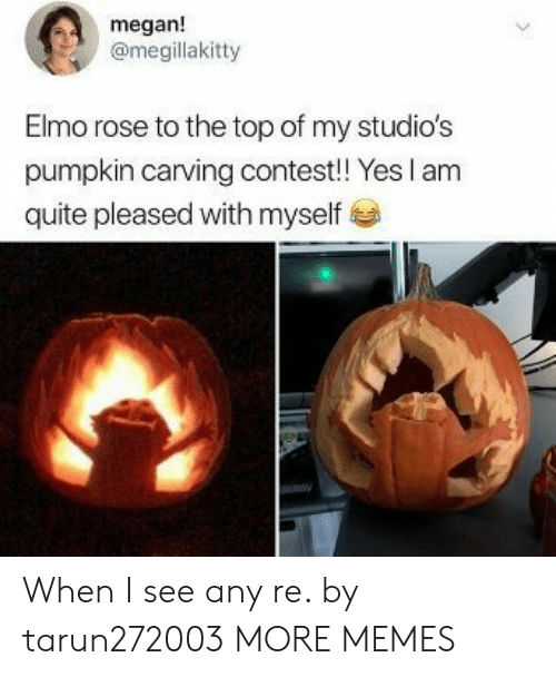 Dank, Elmo, and Megan: megan!  @megillakitty  Elmo rose to the top of my studio's  pumpkin carving contest! Yes I am  quite pleased with myself When I see any re. by tarun272003 MORE MEMES