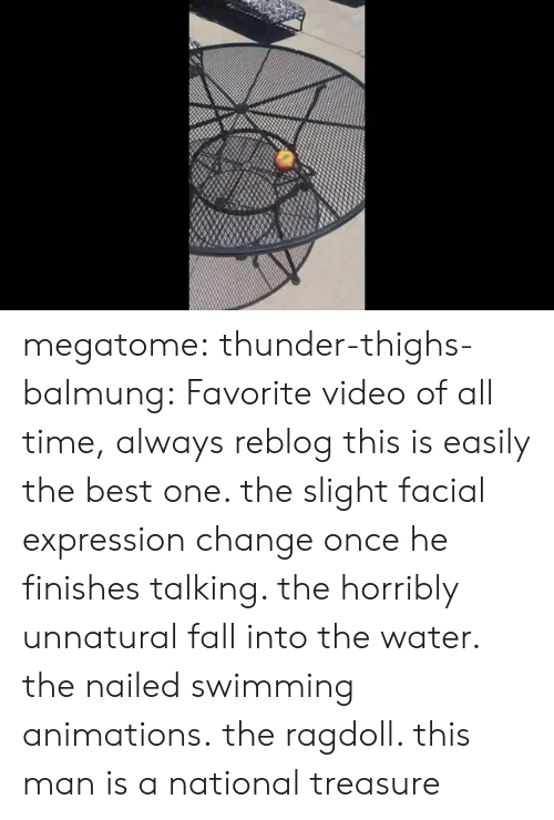 Fall, Tumblr, and Best: megatome:  thunder-thighs-balmung: Favorite video of all time,  always reblog this is easily the best one. the slight facial expression change once he finishes talking. the horribly unnatural fall into the water. the nailed swimming animations.   the ragdoll. this man is a national treasure