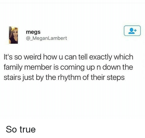Family, Megan, and Memes: megs  Megan Lambert  It's so weird how u can tell exactly which  family member is coming up n down the  stairs just by the rhythmof their steps So true
