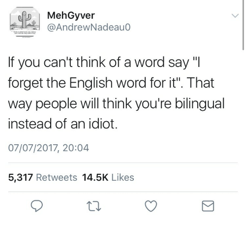 how to say you re bilingual in a resume