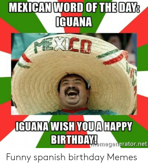 Mekican Word Oftheday Guana Iguana Wish Youhappy Birthday