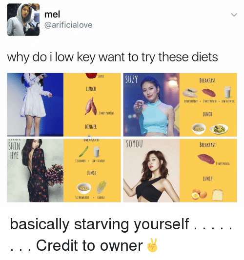 Low Key, Memes, and 🤖: mel  arificialove  why do i low key want to try these diets  SUlY  BREAKFAST  LUNCH  CHICKEN BREAST 1SWEEI POTATO  OW-FAT MILK  LUNCH  SWEET POTATO S  DINNER  ITIIVIN  DACANIA)  SO YOU  BREAKFAST  SHIN  HYE  ON-fAT MILK  LUNCH  LUNCH  l/2 BROWNRICE CABBAGE basically starving yourself . . . . . . . . Credit to owner✌