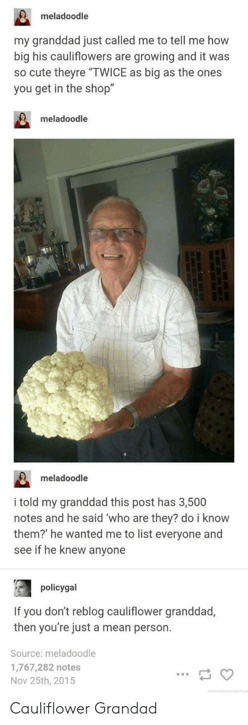 "Bilbo, Cute, and Mean: meladoodle  my granddad just called me to tell me how  big his cauliflowers are growing and it was  so cute theyre ""TWICE as big as the ones  you get in the shop""  meladoodle  meladoodle  i told my granddad this post has 3,500  notes and he said 'who are they? do i know  them?' he wanted me to list everyone and  see if he knew anyone  policygal  If you don't reblog cauliflower granddad,  then you're just a mean person.  Source: meladoodle  1,767,282 notes  Nov 25th, 2015 Cauliflower Grandad"