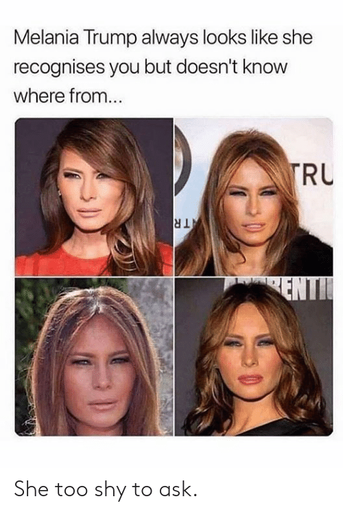 Dank, Melania Trump, and Trump: Melania Trump always looks like she  recognises you but doesn't know  where from..  RU  dl She too shy to ask.