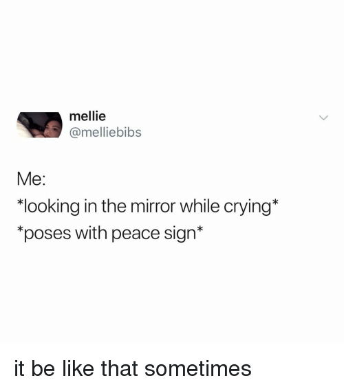 "Be Like, Crying, and Mirror: mellie  @melliebibs  Me:  ""looking in the mirror while crying*  ""poses with peace sign* it be like that sometimes"