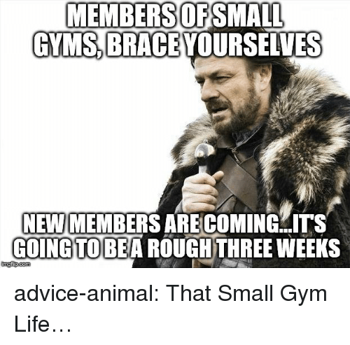 Advice, Gym, and Life: MEMBERSOFSMALL  GYMS BRACE YOURSELVES  NEW MEMBERS ARE COMING  COINGTOBEA ROUGHTHREE WEEKS  ITS advice-animal:  That Small Gym Life…
