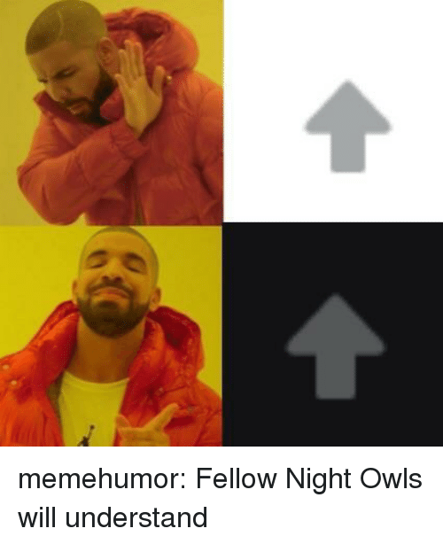 Tumblr, Blog, and Http: memehumor:  Fellow Night Owls will understand