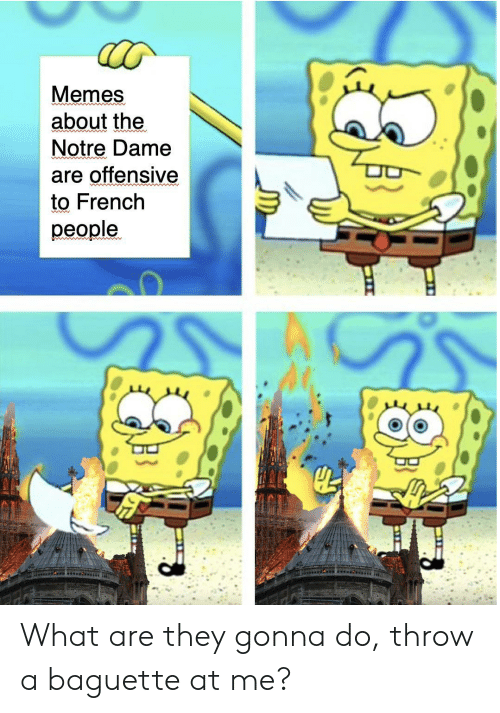 Memes, Notre Dame, and French: Memes  about the  Notre Dame  are offensive  to French  people.  od What are they gonna do, throw a baguette at me?