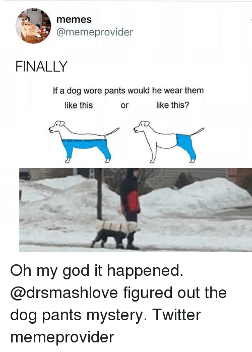 God, Memes, and Oh My God: memes  @memeprovider  FINALLY  If a dog wore pants would he wear them  like this  or  like this? Oh my god it happened. @drsmashlove figured out the dog pants mystery. Twitter memeprovider