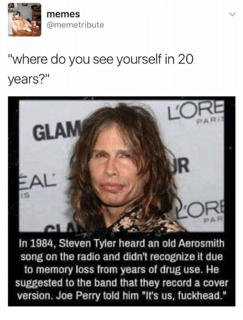 "Aerosmith, Memes, and Radio: memes  @memetribute  ""where do you see yourself in 20  years?""  PARI  GLAM  EAL  OR  PAR  In 1984, Steven Tyler heard an old Aerosmith  song on the radio and didn't recognize it due  to memory loss from years of drug use. He  suggested to the band that they record a cover  version. Joe Perry told him ""It's us, fuckhead"""