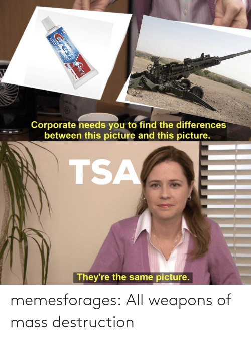 Target, Tumblr, and Blog: memesforages:  All weapons of mass destruction