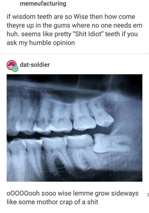 Memeufacturing if Wisdom Teeth Are So Wise Then How Come