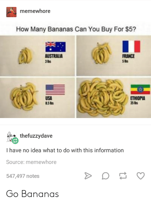 Australia, France, and Information: memewhore  How Many Bananas Can You Buy For $5?  AUSTRALIA  3lhs  FRANCE  USA  ETHIOPIA  e thefuzzydave  I have no idea what to do with this information  Source: memewhore  547,497 notes Go Bananas