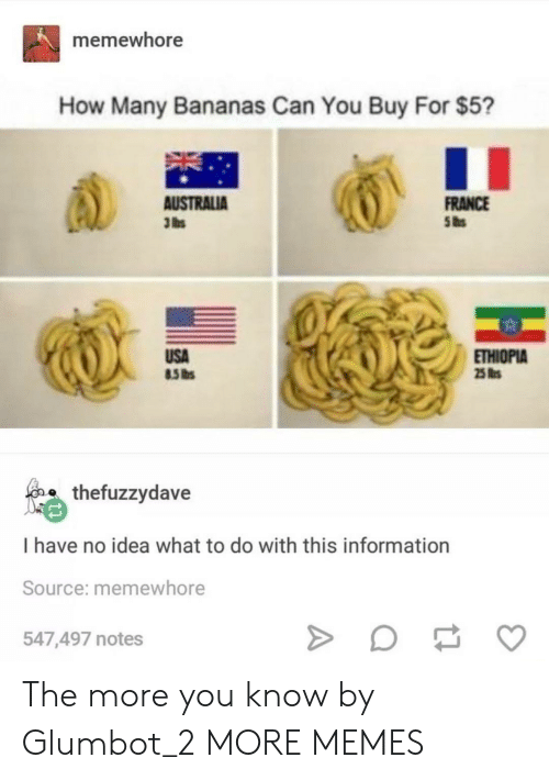 Dank, Memes, and Target: memewhore  How Many Bananas Can You Buy For $5?  FRANCE  AUSTRALIA  3 lbs  USA  ETHIOPIA  25 s  o thefuzzydave  I have no idea what to do with this information  Source: memewhore  547,497 notes The more you know by Glumbot_2 MORE MEMES