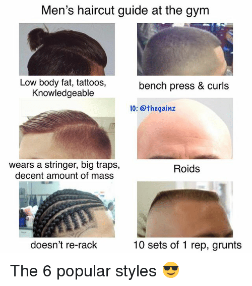Gym, Haircut, and Memes: Men's haircut guide at the gym  Low body fat, tattoos,  Knowledgeable  bench press & curls  IG: @thegainz  wears a stringer, big traps,  decent amount of mass  Roids  doesn't re-rack  10 sets of 1 rep, grunts The 6 popular styles 😎
