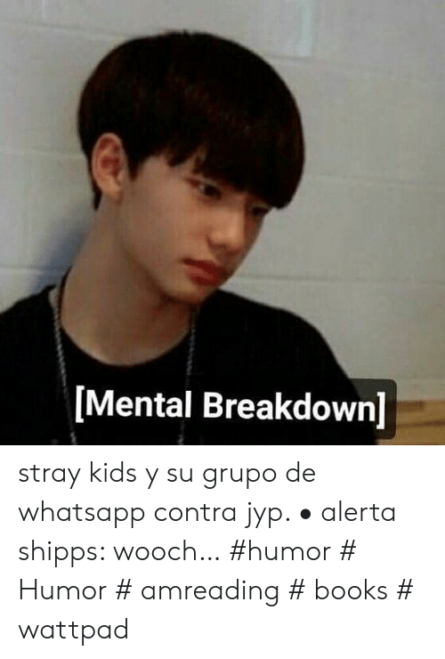 Mental Breakdown Stray Kids Y Su Grupo De Whatsapp Contra