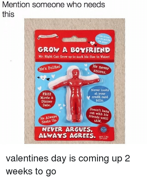 Memes, Valentine's Day, and Date: Mention someone who needs  this  GROW A BOYFRIEND  Mr. Right Can Grow up to 600% his Size in Water!  He never  He's Politel  snores.  FREE  Movie &  Dinner  Never looks  at your  credit card  bills.  Date. V  Doesn't hang  out with his  frlends unti  He Alway  Shuts Up.  AM.  NEVER ARGUES,  ALWAYS AGREES. gzs valentines day is coming up 2 weeks to go