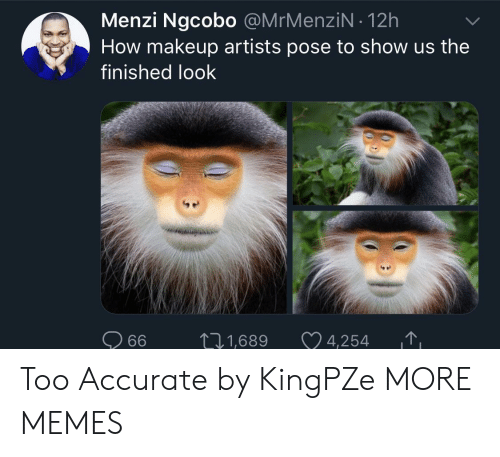 Dank, Makeup, and Memes: Menzi Ngcobo @MrMenziN 12h  How makeup artists pose to show us the  finished look  DIN  1,689 4,254 T Too Accurate by KingPZe MORE MEMES