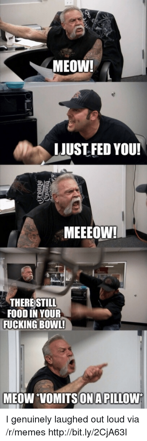Food, Fucking, and Memes: MEOW!  LJUST FED YOU!  MEEEOW!  THERE STILL  FOOD IN YOUR  FUCKING BOWL!  MEOW VOMITSONA PILLOW I genuinely laughed out loud via /r/memes http://bit.ly/2CjA63l