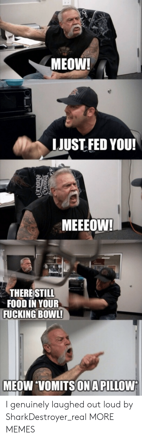 Dank, Food, and Fucking: MEOW!  LJUST FED YOU!  MEEEOW!  THERE STILL  FOOD IN YOUR  FUCKING BOWL!  MEOW VOMITSONA PILLOW I genuinely laughed out loud by SharkDestroyer_real MORE MEMES