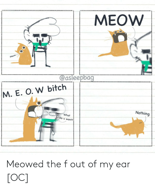 Ear, Out, and The: Meowed the f out of my ear [OC]