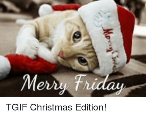 Memes Tgif And Mer Friday Christmas Edition