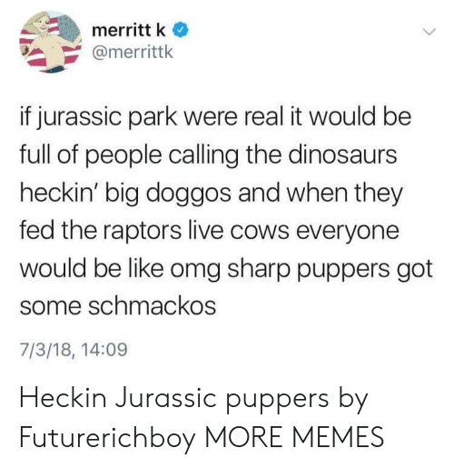 Be Like, Dank, and Jurassic Park: merritt k  @merrittk  if jurassic park were real it would be  full of people calling the dinosaurs  heckin' big doggos and when they  fed the raptors live cows everyone  would be like omg sharp puppers got  some schmackos  7/3/18, 14:09 Heckin Jurassic puppers by Futurerichboy MORE MEMES