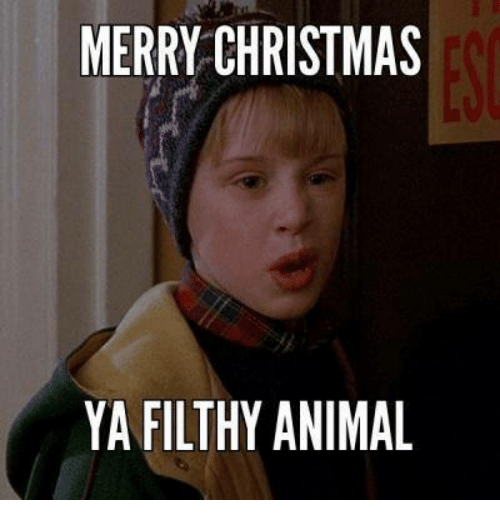 memes merry christmas and merry christmas ya filthy animal - Merry Christmas Ya Filthy Animal