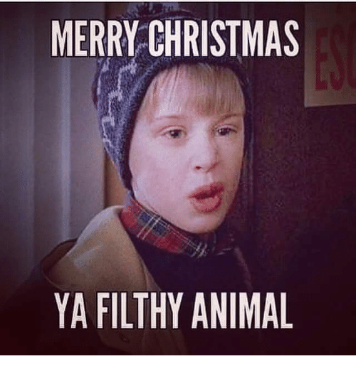memes and merry christmas ya filthy animal merry christmas ya filthy animal - Merry Christmas Ya Filthy Animal